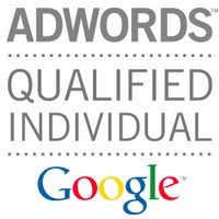 Davide Berardino, Professionista qualificato Google Adwords